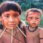 ヤノマミ族とは?シロアリに捧げる精霊返しや特徴、暮らしなど解説